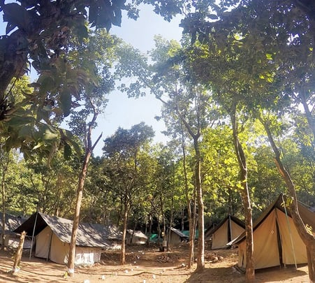 Camping at AquaTerra in Rishikesh