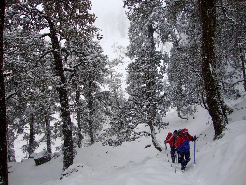 1462954252_winter-kuari-pass-trek-19.jpg