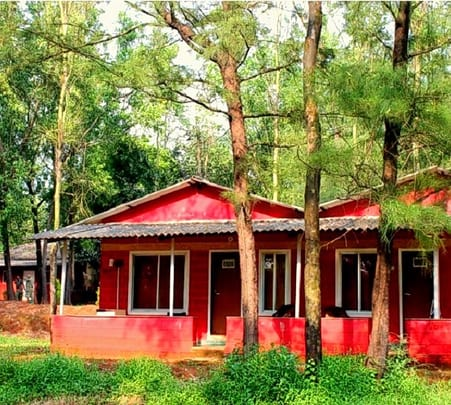 Jungle Resort Amba Leisure Stay and Safari