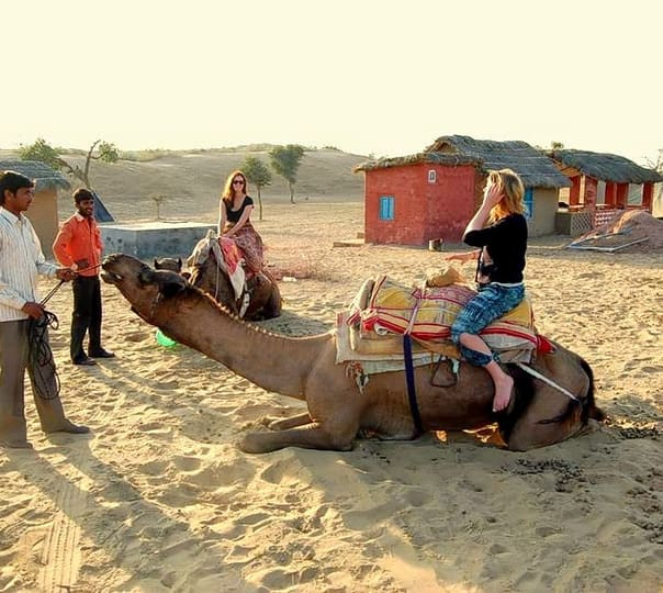 Camping and Camel Safari in Bikaner, Rajasthan