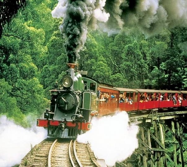 Visit Puffing Billy, Local Craft & Dandenong Forest in Australia