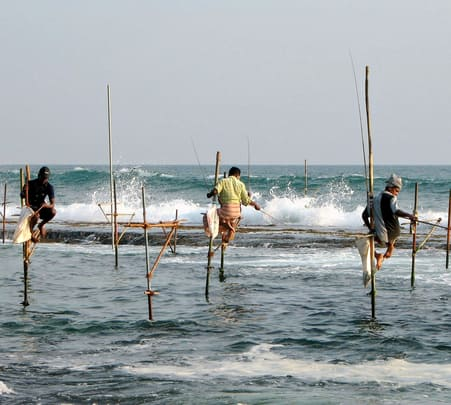 Bottom Fishing Tour at Galle in Sri Lanka