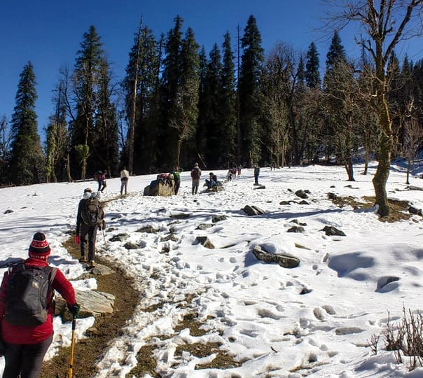 Kedar Kantha Trek For 6 Days