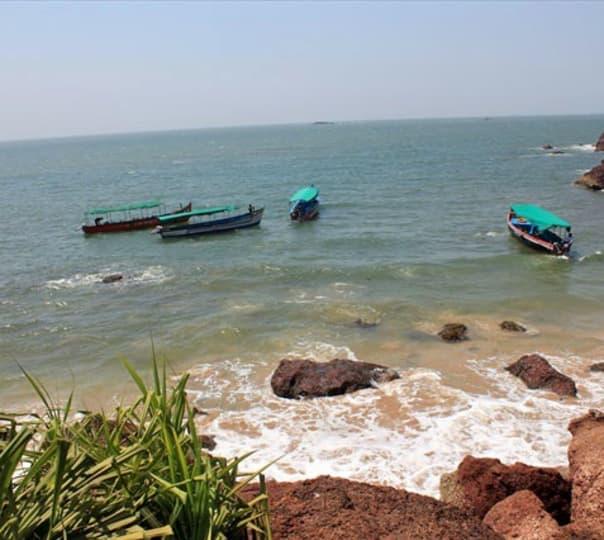 Grand Island Trip with Snorkeling and Monkey Beach in Goa