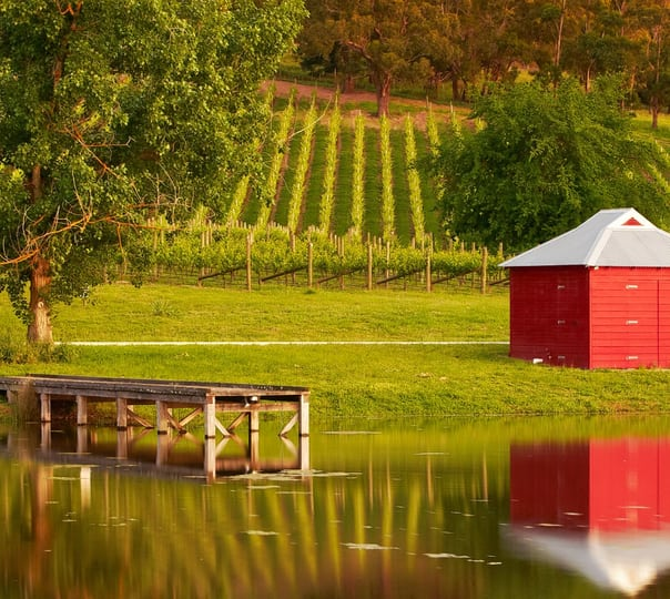 Winery Yarra Valley Tour in Melbourne