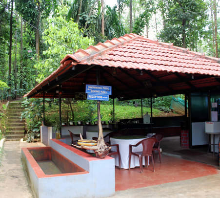 Homestay with Rope Adventure Activities, Chikmagalur