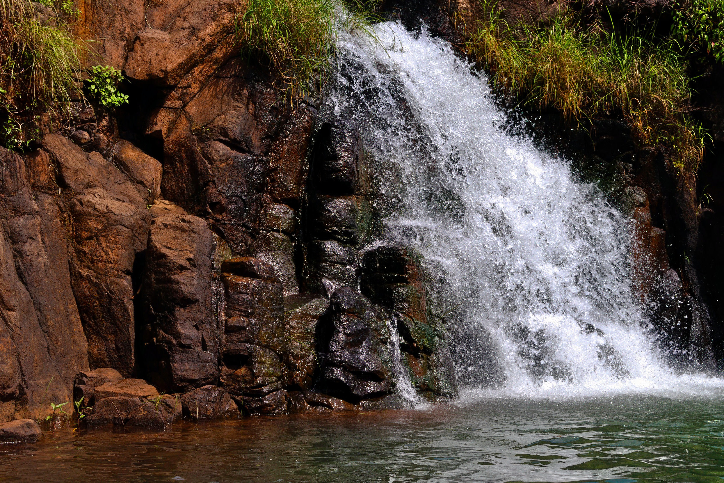 Mapro Garden Mahabaleshwar How To Reach Best Time Tips