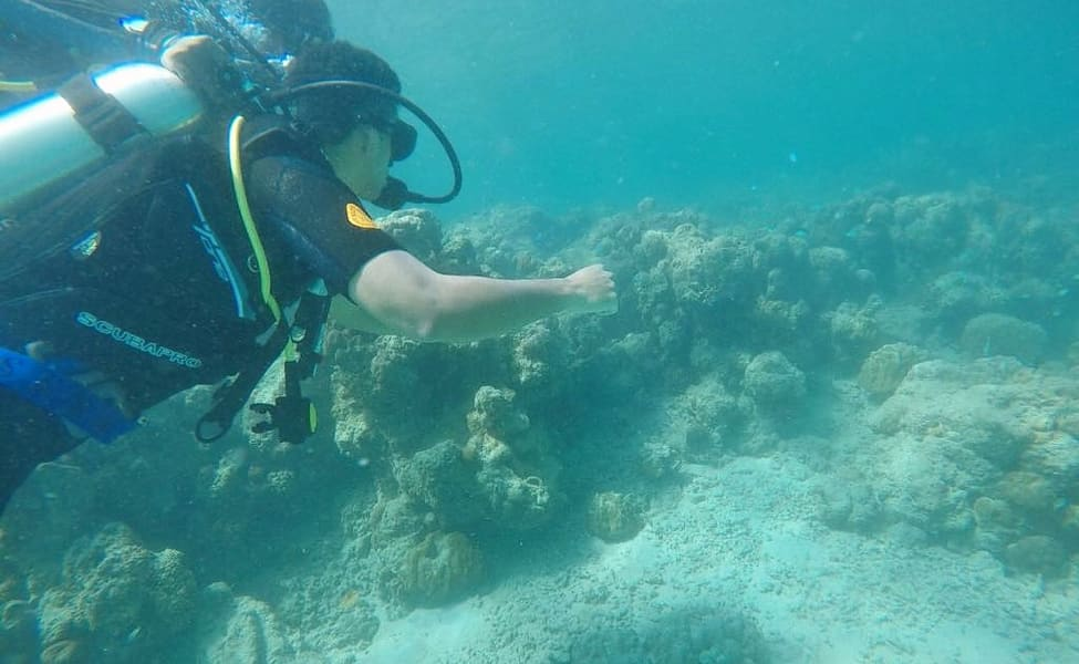 Open / Advanced Open Water Scuba Course In Andaman