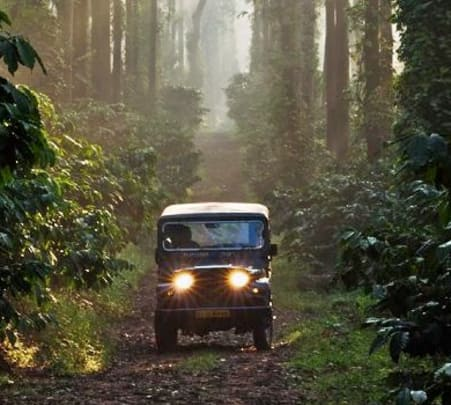 Night Mountain Drive In Coorg