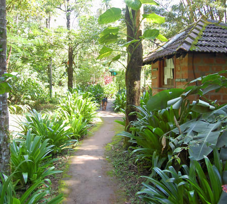 Plantation Tour with Stay and Activities in Kodagu, Coorg