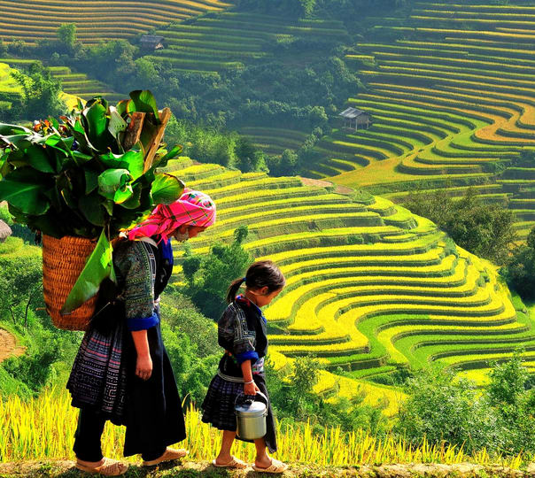 Sapa Sightseeing and Trekking Tour in Vietnam