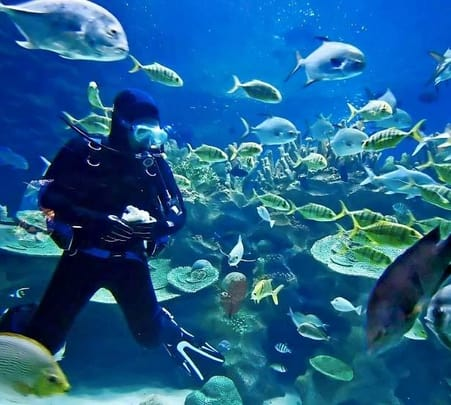 Scuba Diving with Water Sports in Goa