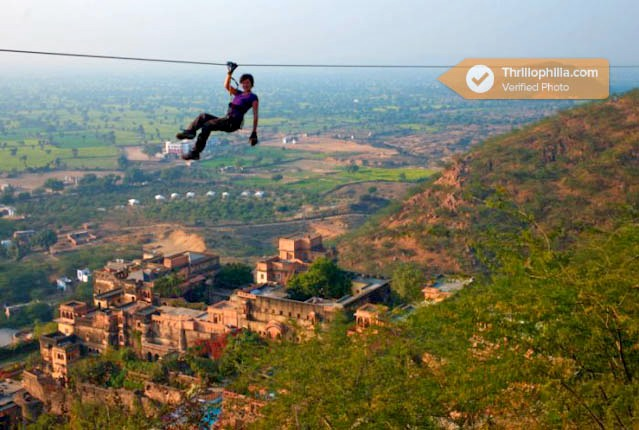 Neemrana_flying_fox_(3).jpg