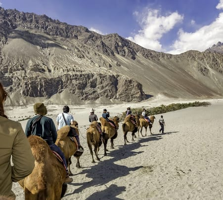 Camel Safari in Nubra Valley Flat 20% off