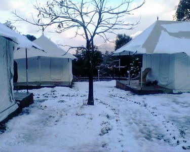 Shivirama Camp, Kangra | Book Online @ Flat 28% off