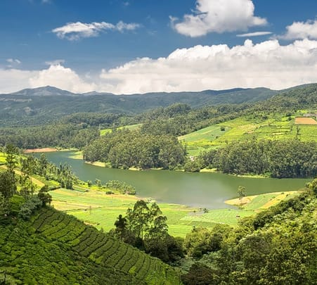 Ooty Sightseeing Tour Flat 52% off