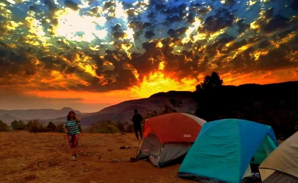 new year celebrations camping in the barvi river jungle camp