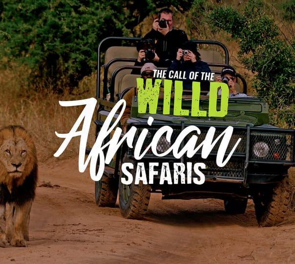 Pure African Safari with Bungee Jumping