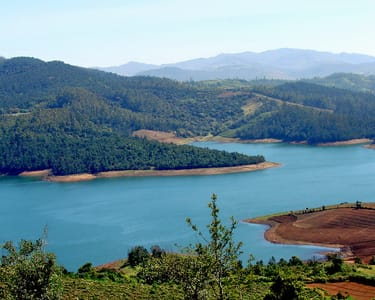 1 Day Ooty Avalanche Sightseeing Tour