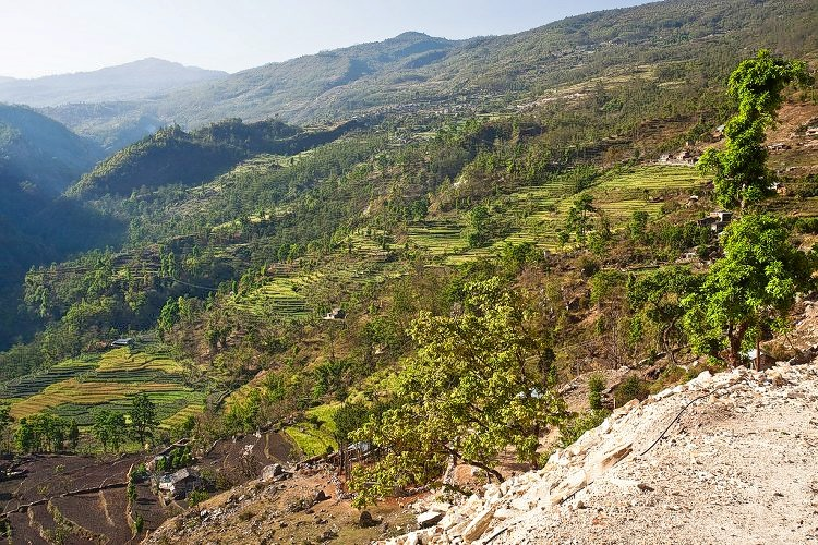 Ghorepani_poon_hill_trekking_in_nepal_(4).jpg
