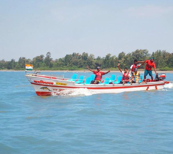 Dolphin Trip in Alibaug