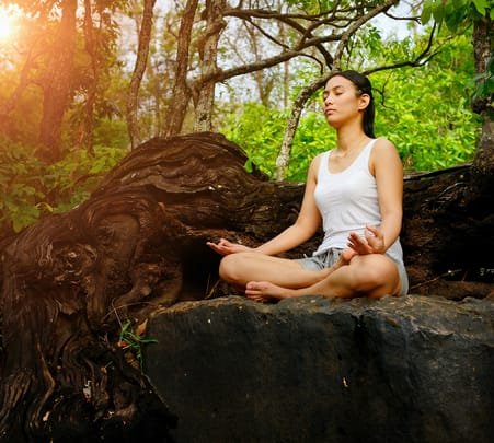 Full-day Guided Meditation Tour with Lunch-flat 22% off