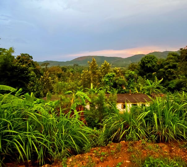 Hilltop Homestay Experience in Chikmagalur