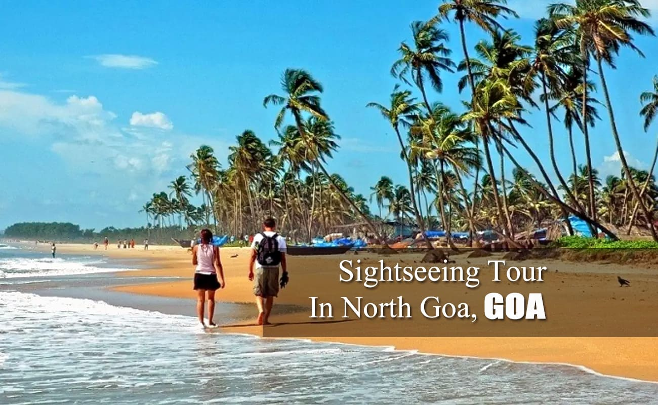 North Goa Sightseeing Full Day Tour | Thrillophilia