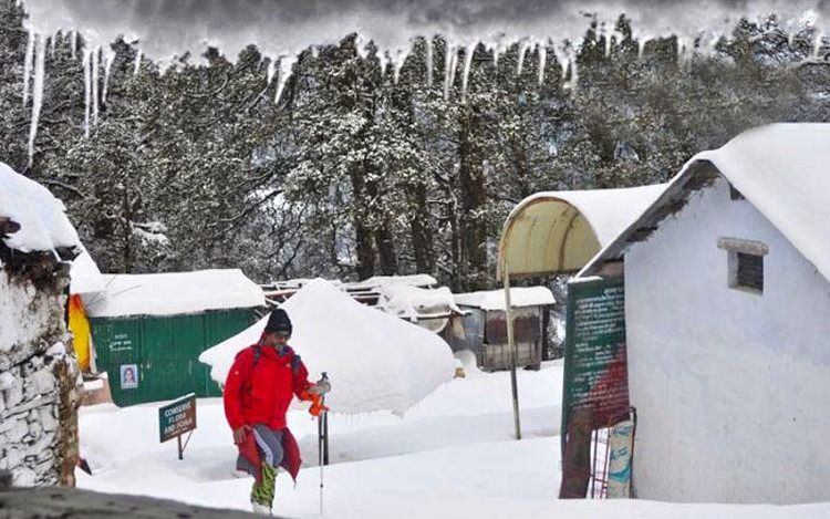 M_snow_trek_to_chopta__deoriatal_and_chandrashila_peak__uttarakhand_07.jpg