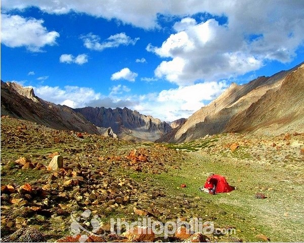 Padum-to-darcha-trek-1_ladakh.jpg