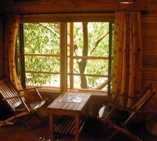 Agro Home Stay at Dapoli, Ratnagiri
