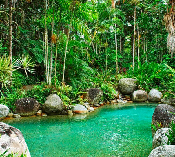 Experience the Great Barrier Reef, Daintree Rainforest and Aboriginal Culture
