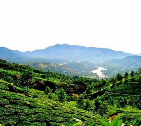 Enchanting Munnar
