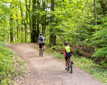 Mountain Biking at Munnar, Kerala Flat 15% off