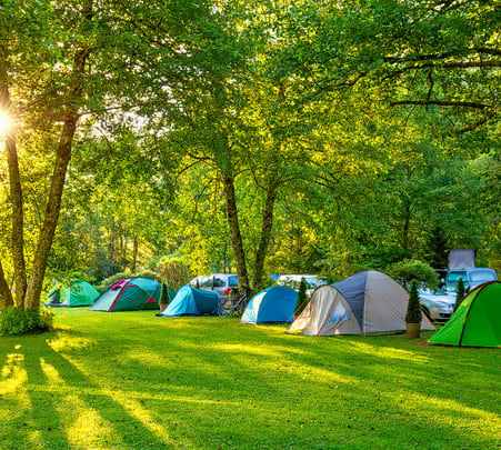 Adventure Camping in Wayanad - Flat 20% off