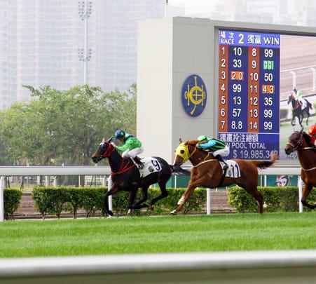 Hong Kong Horse Racing Night Tour