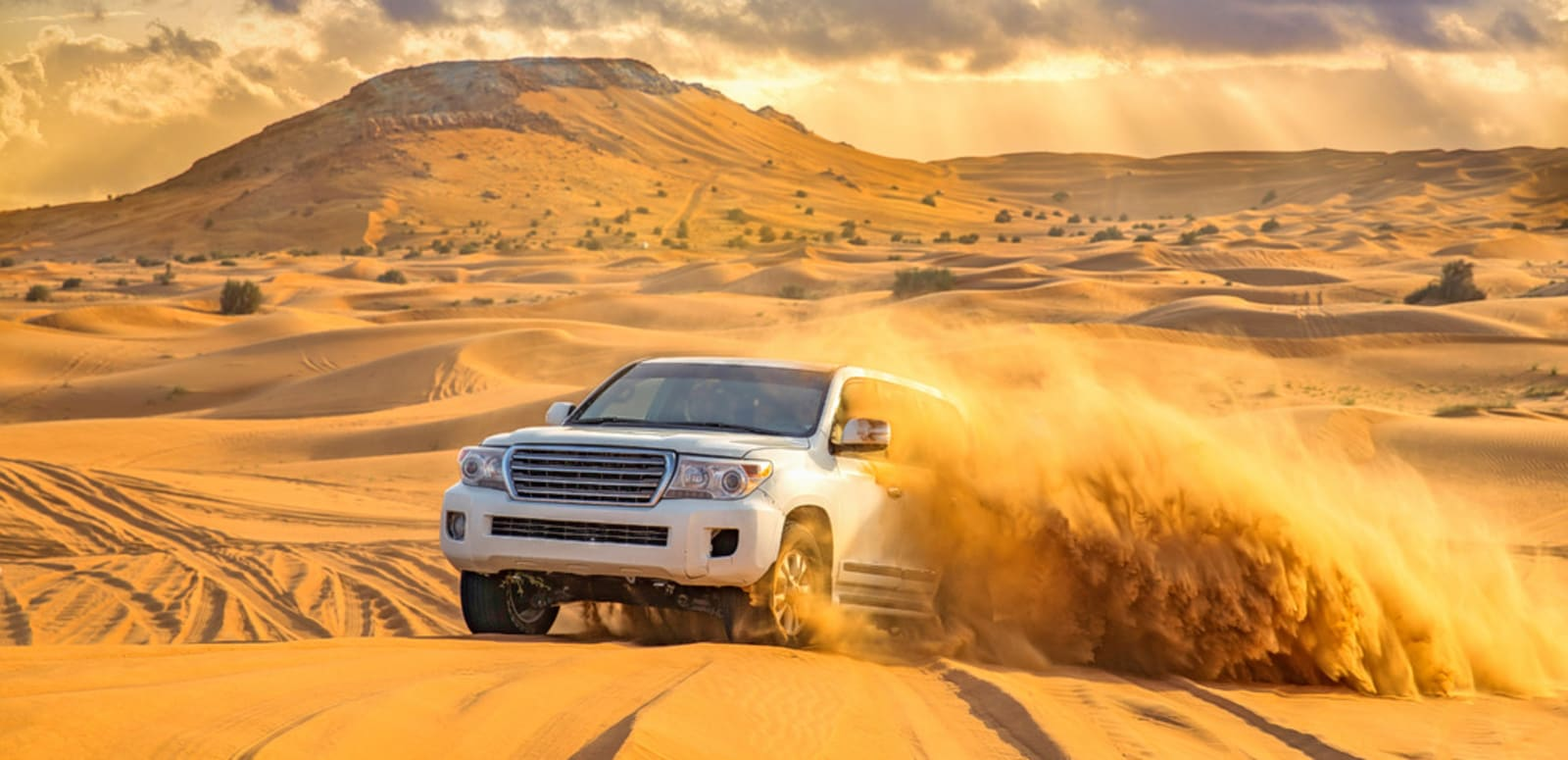 Hasil gambar untuk Dubai desert safari-The The perfect spot for vacations.