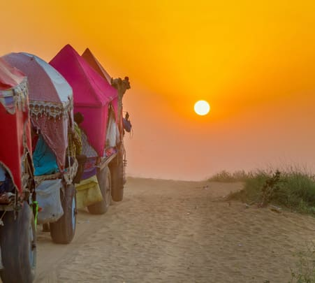 Camel Safari in Pushkar Flat 28% Off