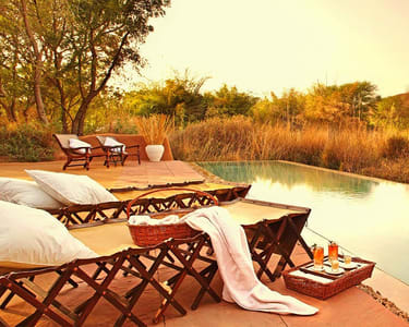 Lavish Stay at Sher bagh Ranthambore, Rajasthan