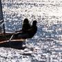 Memorable Couple Sailing in Goa