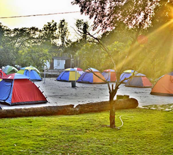 Nature Camping at Dahanu
