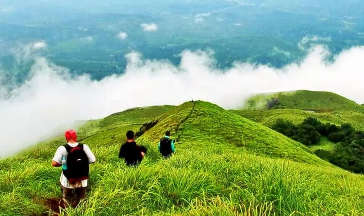 Go For A Trekking Trip In Thekkady