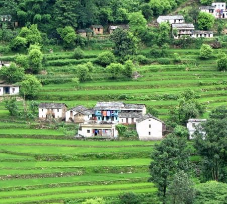 Valley of Flowers Tour Package 2019, Uttarakhand