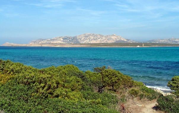 1481609214_asinara-island01.jpg