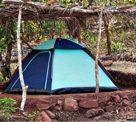 Wildlife Adventure and Night Camping in Dandeli