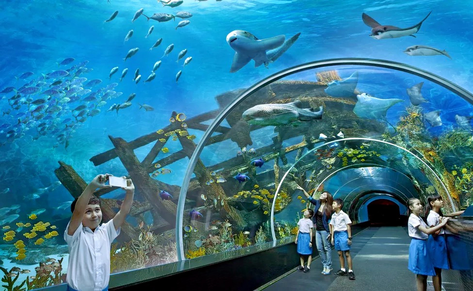1540041018_dubai_aquarium.jpg