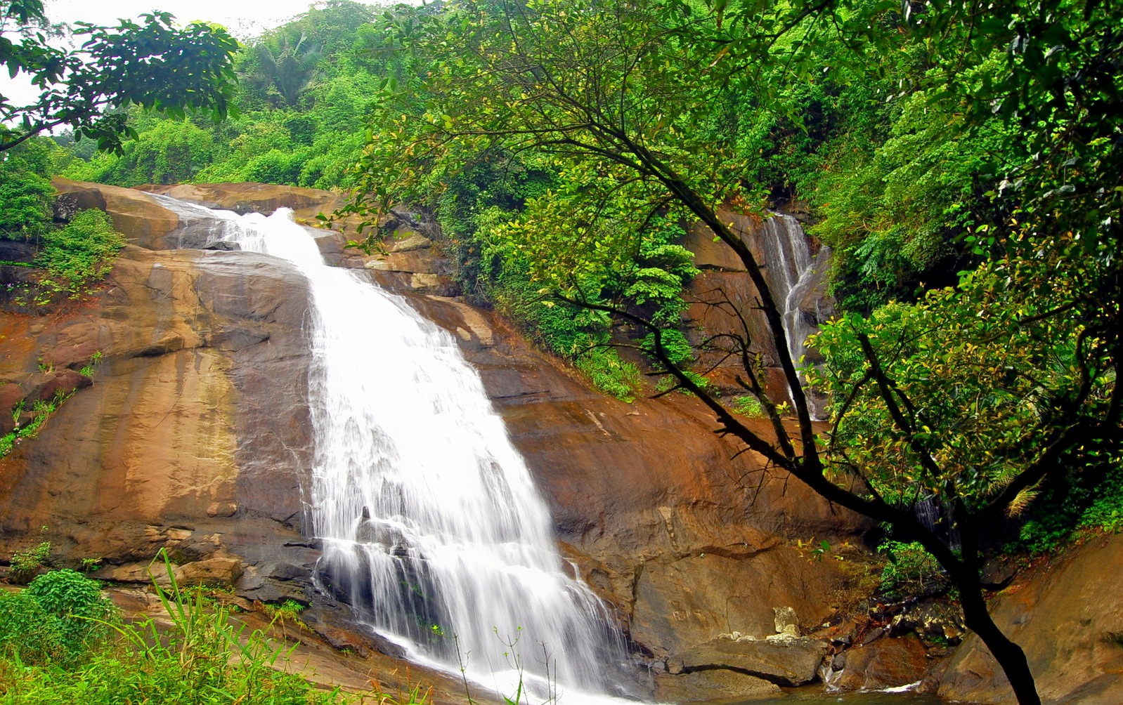 Thusharagiri_waterfall_trek_(1).jpg
