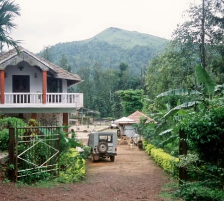 Nature Plantation Stay Experience in Chikmagalur