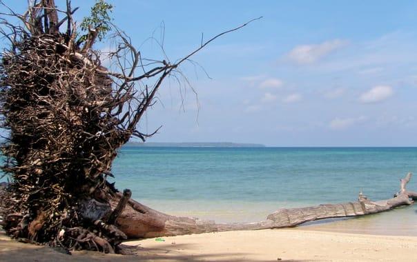 1488203005_wandoor-beach-02.jpg