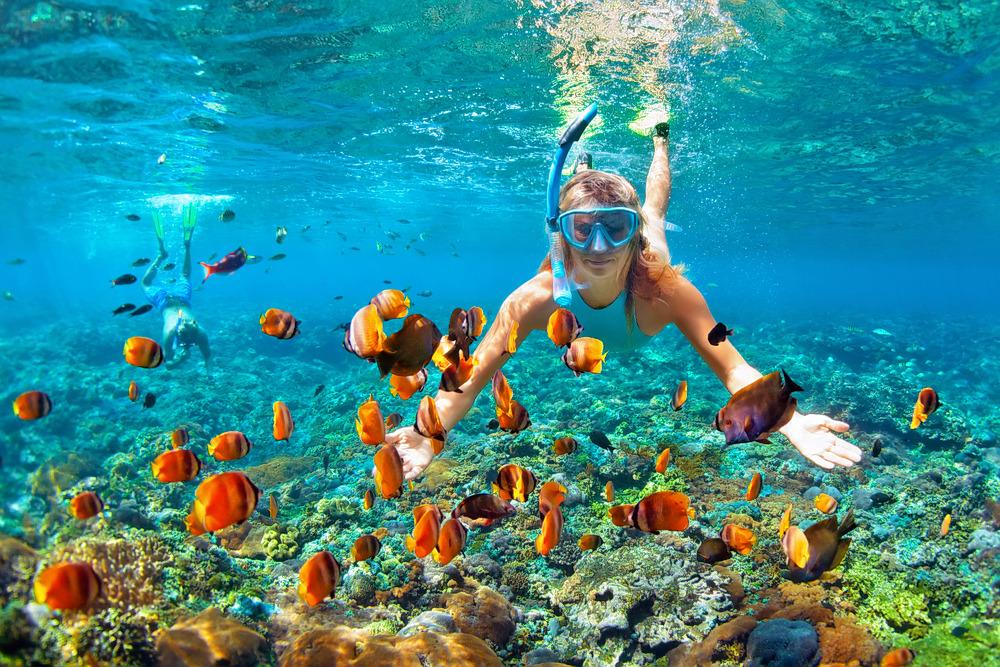 1593413432_snorkelling.jpg